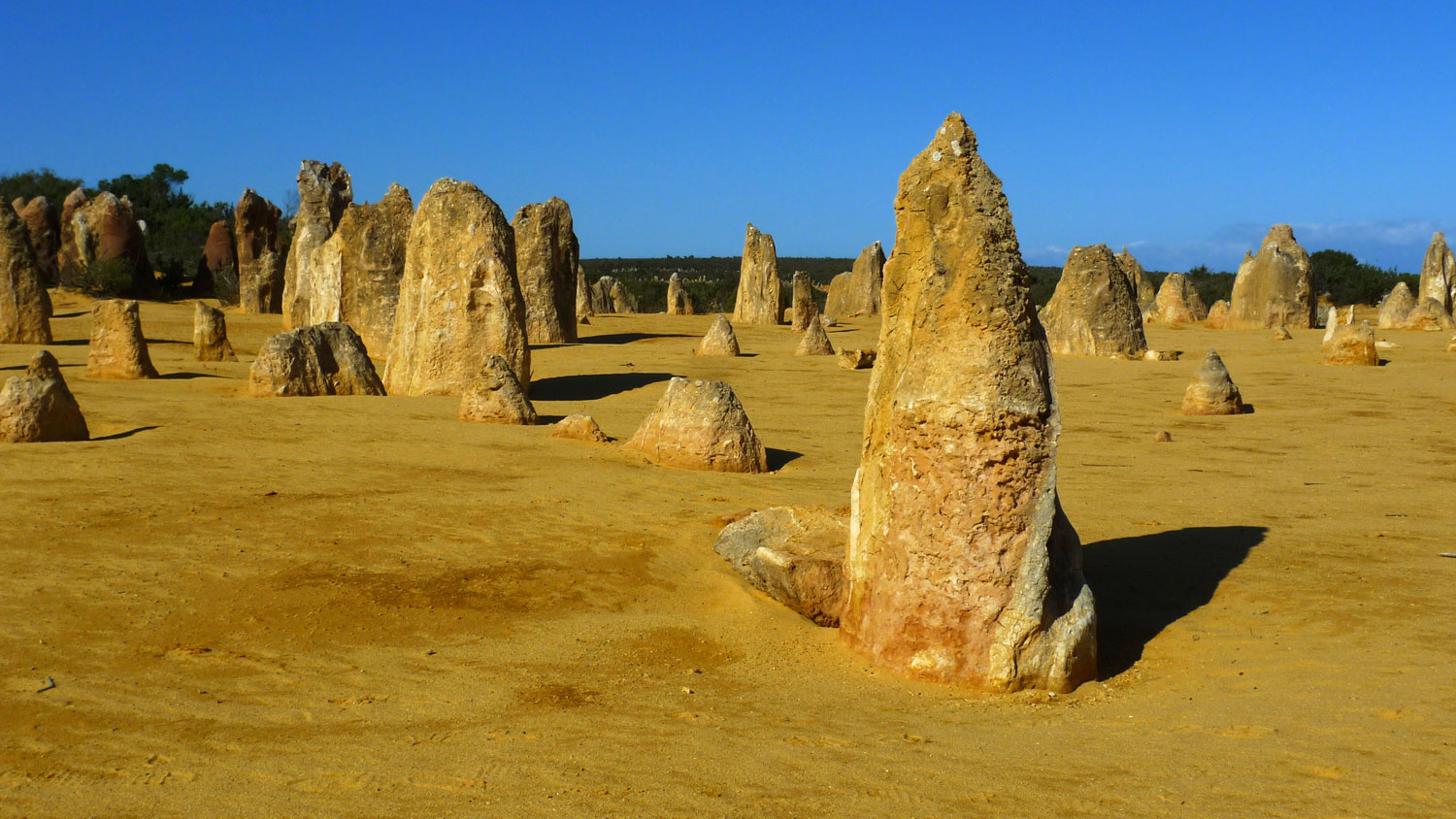 The Pinnacles in Nambung National Park