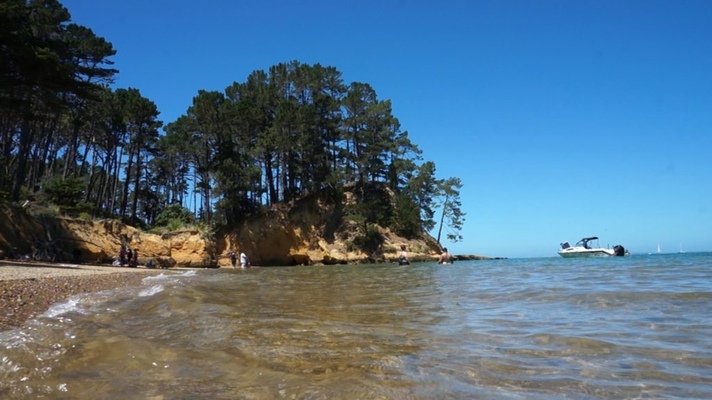 Kawau-Island